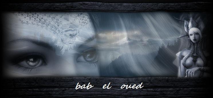 Babel Oued Index du Forum