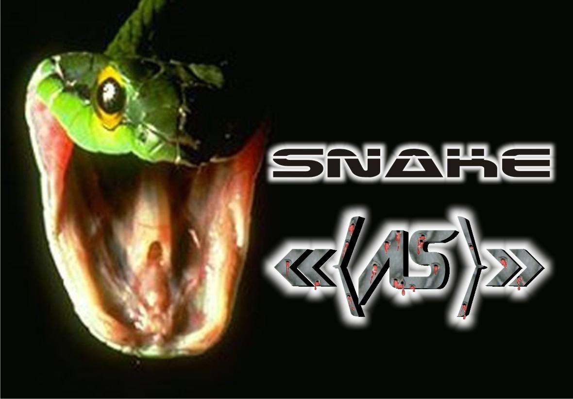 Snake-12993cb