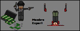 Membre Expert