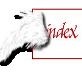 °~Das Kreuz Des Engels~° Index du Forum