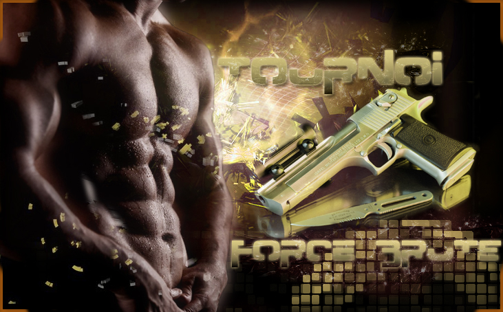 force brute Index du Forum