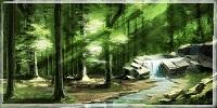 Bois de Lyos