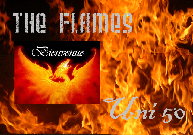 "Le Forum officiel de ""The Flames"" Index du Forum"