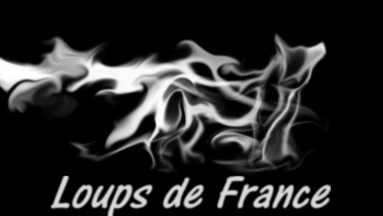 loups de france Index du Forum