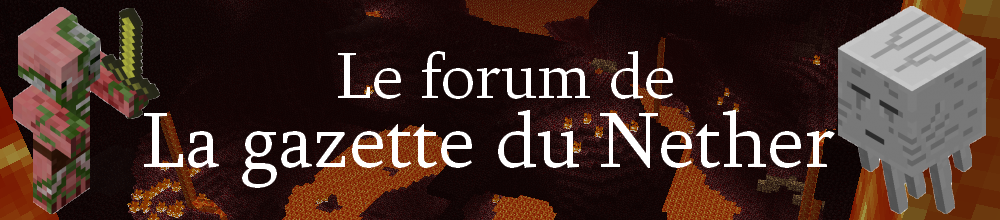 Le forum de La gazette du Nether Index du Forum